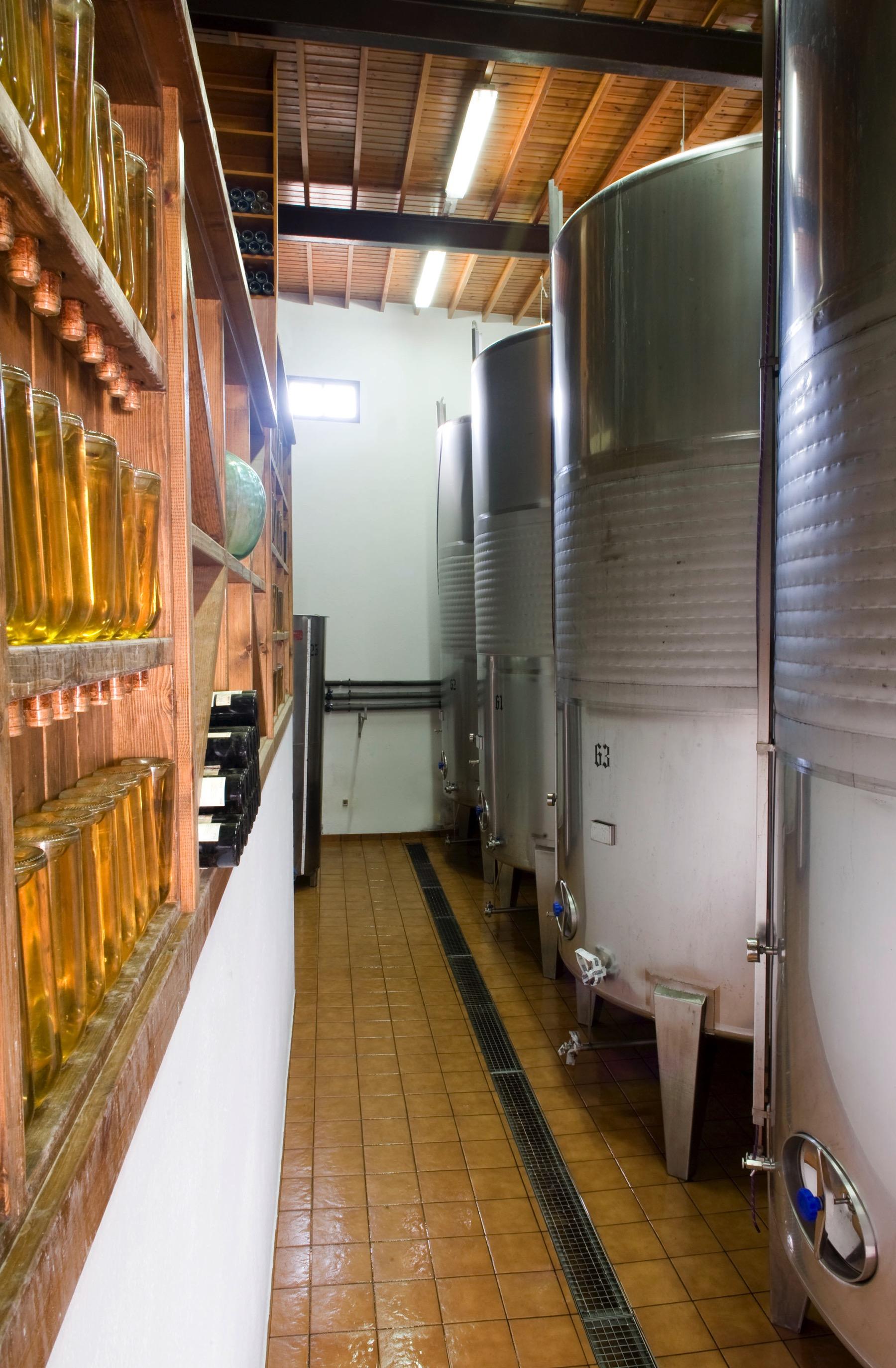 Bodega interior 07